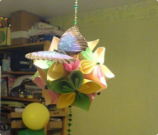 Продолжаю свой репортаж о бабочках из сада Миндо.   Бабочка Калиго - первая красавица, прибывшая в дом из сада (фото 2011года).   На кухонном столе корзина с живыми цветами и комнатный цветок - идеальные условия для домашней бабочки. фото 19