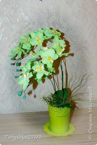 Желтая орхидея (похожа на цимбидиум) фото 5