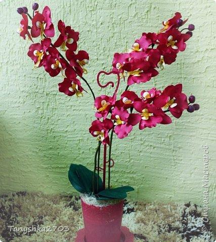 Желтая орхидея (похожа на цимбидиум) фото 3