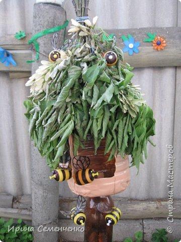 Пчелиные улики,какие поселились у меня дома. Понадобится 5 л бутылка, для пчёлок Киндерсюрпризы. Это мой первый улик. фото 3