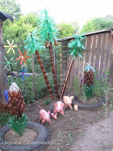 Вот решила Вам показать свои поделки из пластиковых бутылок.Ведь из такого ненужного материала можно сделать много интересных вещей  для сада. Пальма с кокосами. фото 1