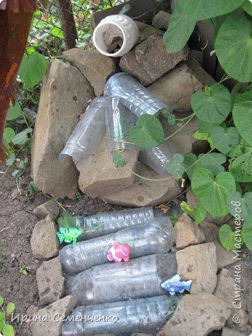 Вот решила Вам показать свои поделки из пластиковых бутылок.Ведь из такого ненужного материала можно сделать много интересных вещей  для сада. Пальма с кокосами. фото 3