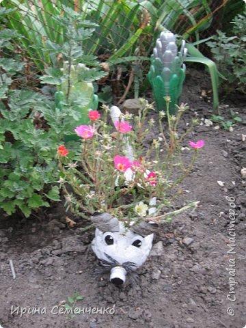 Вот решила Вам показать свои поделки из пластиковых бутылок.Ведь из такого ненужного материала можно сделать много интересных вещей  для сада. Пальма с кокосами. фото 16