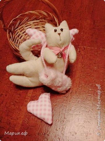 кошка с крыльями фото 1