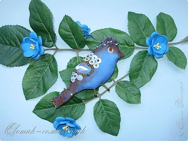 Синяя птица - птица моей веры, надежды и любви! Птица моей радости! Будь всегда со мной, Синенькая моя...  фото 1
