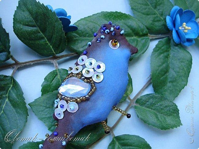 Синяя птица - птица моей веры, надежды и любви! Птица моей радости! Будь всегда со мной, Синенькая моя...  фото 2