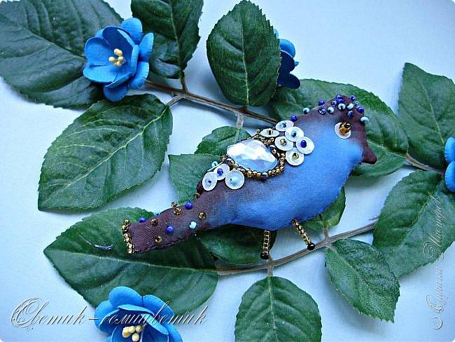 Синяя птица - птица моей веры, надежды и любви! Птица моей радости! Будь всегда со мной, Синенькая моя...  фото 3