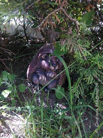 Здравствуйте всем!хочу похвастаться своими растениями.Я много лет оформляла двор в английском стиле,Т.Е. многолетние растения и всегда что-то цветет.И ,сейчас,мне очень нравиться фото 14