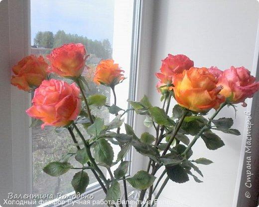 Здравствуйте жители Страны Мастеров!!!Вот такой букет из девяти роз !!!!Розы уже давно нашли своих владельцев,а только сейчас нашла время показать их вам. фото 2
