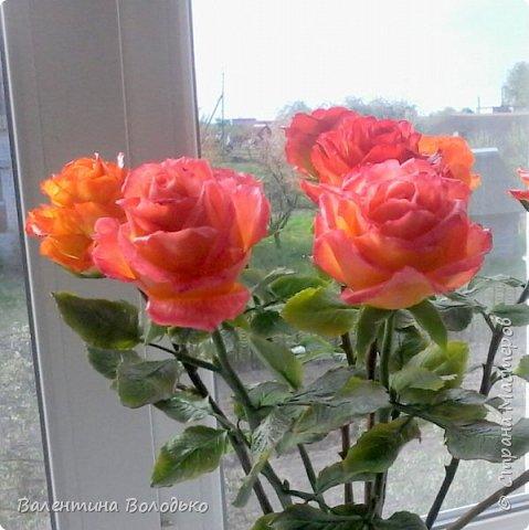 Здравствуйте жители Страны Мастеров!!!Вот такой букет из девяти роз !!!!Розы уже давно нашли своих владельцев,а только сейчас нашла время показать их вам. фото 5