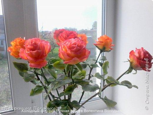 Здравствуйте жители Страны Мастеров!!!Вот такой букет из девяти роз !!!!Розы уже давно нашли своих владельцев,а только сейчас нашла время показать их вам. фото 4