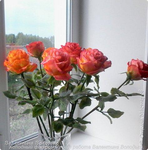Здравствуйте жители Страны Мастеров!!!Вот такой букет из девяти роз !!!!Розы уже давно нашли своих владельцев,а только сейчас нашла время показать их вам. фото 6