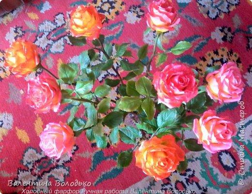 Здравствуйте жители Страны Мастеров!!!Вот такой букет из девяти роз !!!!Розы уже давно нашли своих владельцев,а только сейчас нашла время показать их вам. фото 7