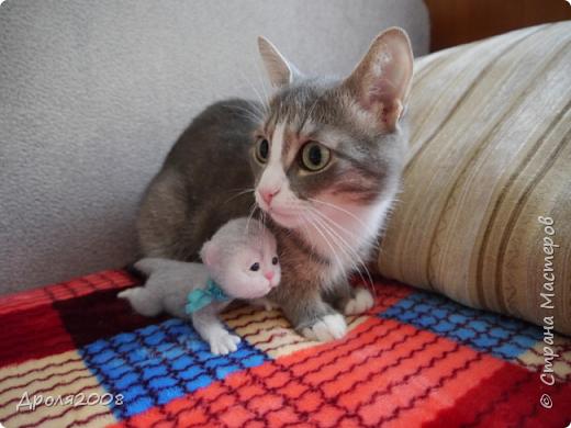 Валяные котятки. В фотосессии принимала участие моя кошка Нюша. фото 3
