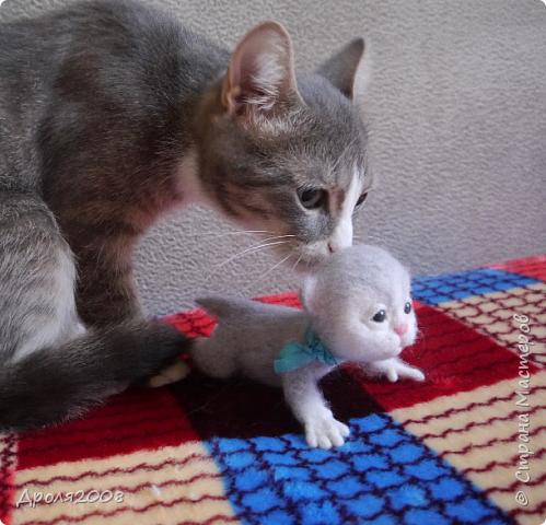 Валяные котятки. В фотосессии принимала участие моя кошка Нюша. фото 4