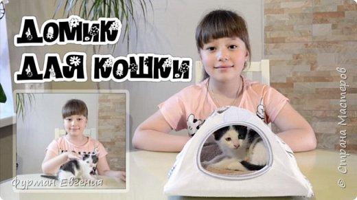 Домик для любимой кошки :) #cathouse