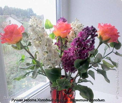 Добрый день дорогие жители Страны Мастеров!!!!Я решила продлить цветение сирени и слепила букет. фото 1