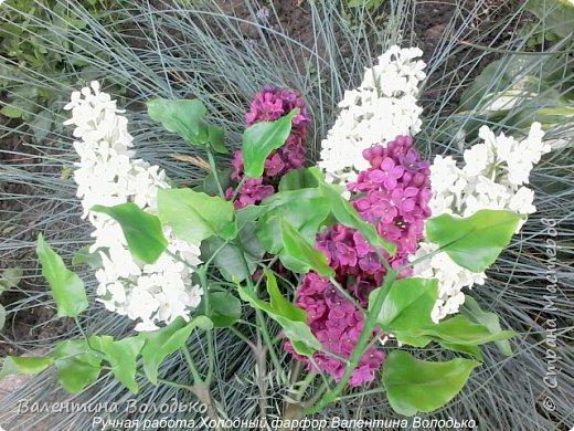 Добрый день дорогие жители Страны Мастеров!!!!Я решила продлить цветение сирени и слепила букет. фото 7