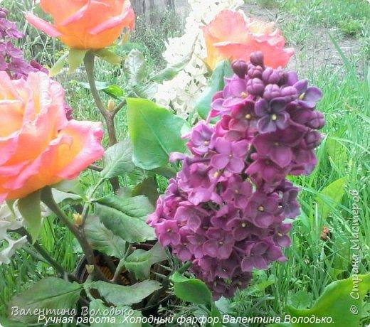 Добрый день дорогие жители Страны Мастеров!!!!Я решила продлить цветение сирени и слепила букет. фото 8