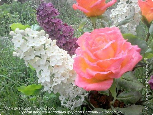 Добрый день дорогие жители Страны Мастеров!!!!Я решила продлить цветение сирени и слепила букет. фото 10