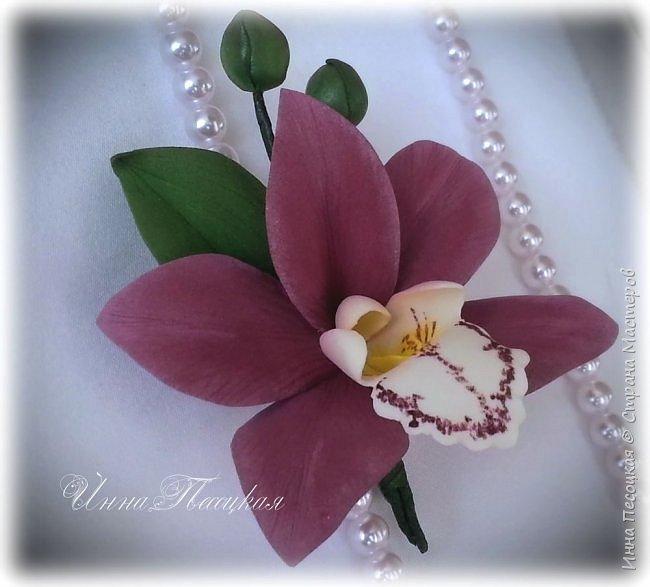 Веточка белой Орхидеи Фаленопсис - это то, с чего все начиналось...))) фото 7