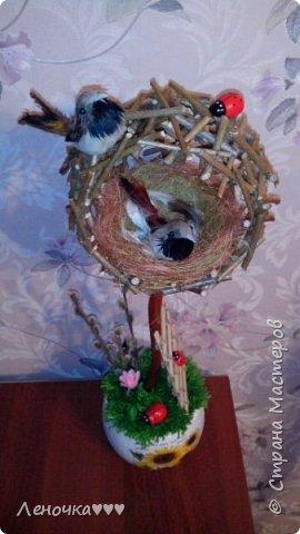 Птичье гнездо из палочек фото 2