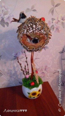 Птичье гнездо из палочек фото 1