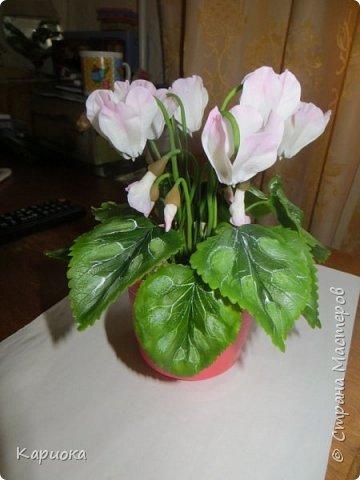 Добрый день, Страна! Наконец руки дошли  до сборки цветка.  Вот такой очередной цикламентик у меня получился. фото 1