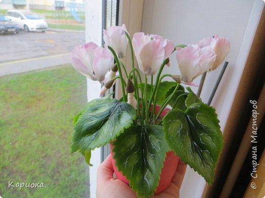 Добрый день, Страна! Наконец руки дошли  до сборки цветка.  Вот такой очередной цикламентик у меня получился. фото 10