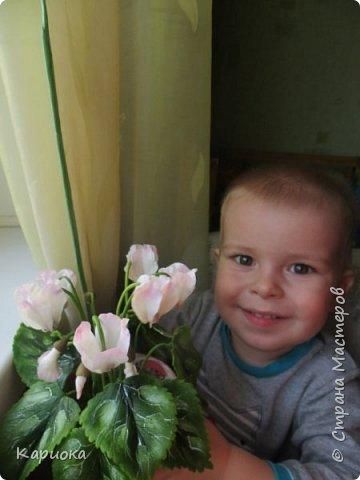 Добрый день, Страна! Наконец руки дошли  до сборки цветка.  Вот такой очередной цикламентик у меня получился. фото 8