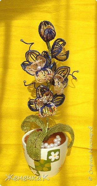 Орхидея из бисера и бусин.  Очень давно не плела цветы! Соскучилась! Сплела на одном дыхании! фото 8