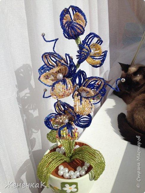 Орхидея из бисера и бусин.  Очень давно не плела цветы! Соскучилась! Сплела на одном дыхании! фото 2