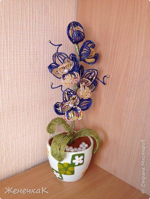 Орхидея из бисера и бусин.  Очень давно не плела цветы! Соскучилась! Сплела на одном дыхании! фото 5