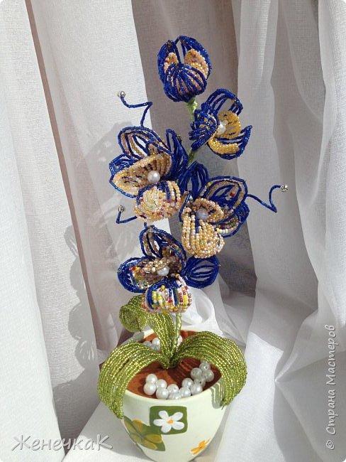 Орхидея из бисера и бусин.  Очень давно не плела цветы! Соскучилась! Сплела на одном дыхании! фото 1