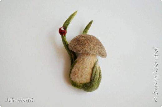 Клевер и грибочек фото 3