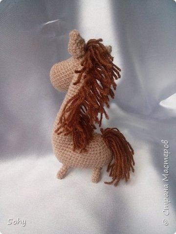 вязаные лошадки фото 3
