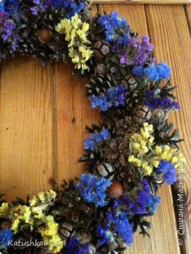 Основа  сплетена из виноградной лозы , шишки сосны, орешки , шишки кипариса, сухоцветы фото 2