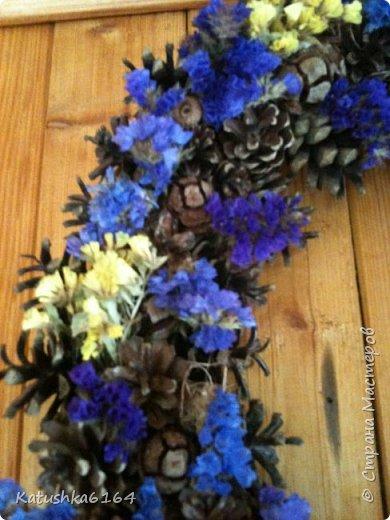 Основа  сплетена из виноградной лозы , шишки сосны, орешки , шишки кипариса, сухоцветы фото 3