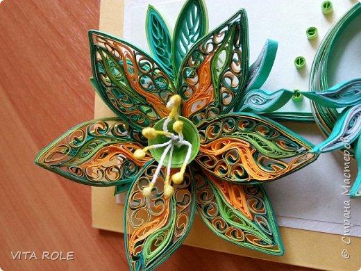 магия цветов фото 7
