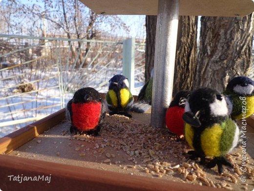 Ещё зимой наваляла всяких птичек. И принесла их конечно своим Радужкам - детям моей разновозрастной группы.  Им очень понравилось держать в руках тех кто прилетает к ним на участок подкормиться, но близко не подпускает)) фото 1