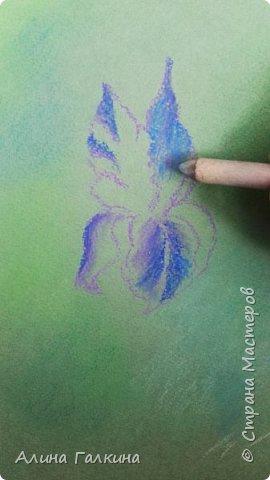 Вот такой простенький цветочек будем рисовать. фото 6