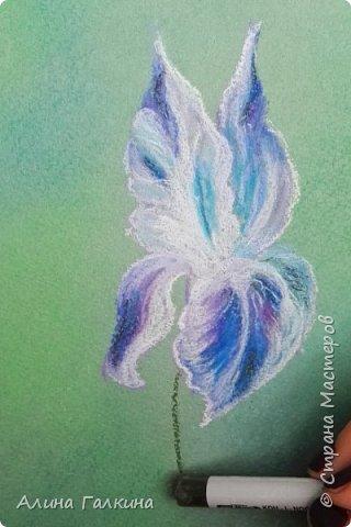 Вот такой простенький цветочек будем рисовать. фото 12