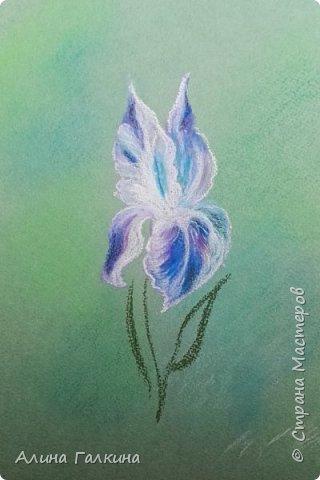 Вот такой простенький цветочек будем рисовать. фото 13