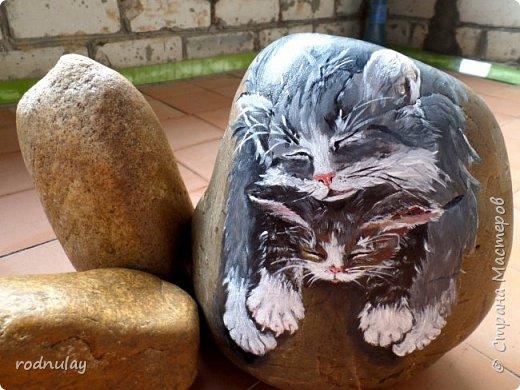 Привет всем, кто творит и интересуется! Я Вера. Хочется поделиться идеями, пусть не новыми, но прикольными. Увидела в интернете как художница (по-моему итальянка, хотя могу ошибаться) рисует на камнях. И возникла идея: почему бы не попробовать и мне вписать их в ландшафтный дизайн? Вот, что получилось.   Понравилась картинка с котами.В процессе они видоизменились, но мне все равно нравятся. фото 1
