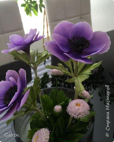 Всем привет!!! Удивительные цветы, напоминающие маленькие розочки или полураспустившиеся пионы, восхищают многих цветоводов-любителей и все же остаются довольно редкими в наших садах.  Это - очаровательные ЛюТиКи азиатские или садовые. фото 11