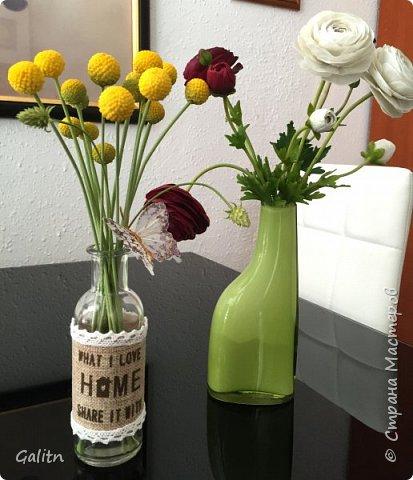 Всем привет!!! Удивительные цветы, напоминающие маленькие розочки или полураспустившиеся пионы, восхищают многих цветоводов-любителей и все же остаются довольно редкими в наших садах.  Это - очаровательные ЛюТиКи азиатские или садовые. фото 1