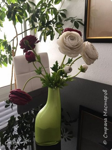 Всем привет!!! Удивительные цветы, напоминающие маленькие розочки или полураспустившиеся пионы, восхищают многих цветоводов-любителей и все же остаются довольно редкими в наших садах.  Это - очаровательные ЛюТиКи азиатские или садовые. фото 5