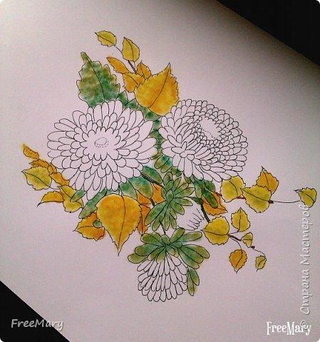 Хризантемы, поэтапный рисунок. На основе гелевой чёрной ручки, акварель и белый маркер.   фото 5