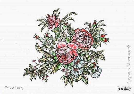 Хризантемы, поэтапный рисунок. На основе гелевой чёрной ручки, акварель и белый маркер.   фото 13