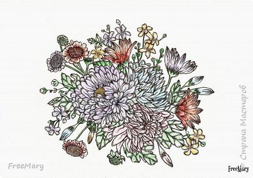 Хризантемы, поэтапный рисунок. На основе гелевой чёрной ручки, акварель и белый маркер.   фото 14
